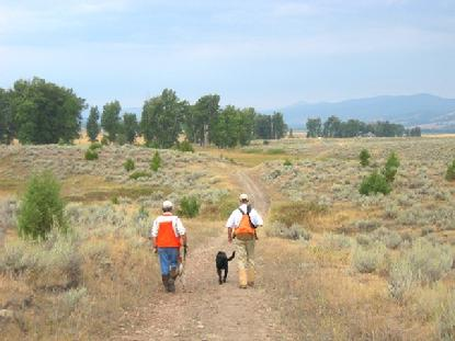 Luke and Clarke, along with their guide, hunt for pheasant in the hills of western Montana.